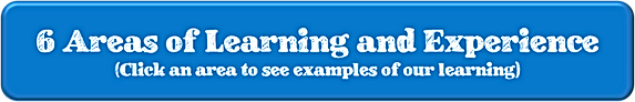 6 areas of learning website.png