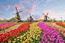 Netherlands-Windmills-and-Tulips-e149283