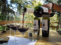Mendoze wine.jpg