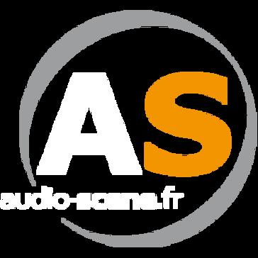 Audio Scene
