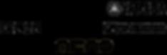 Logo Fournisseur Son AudioScene.png