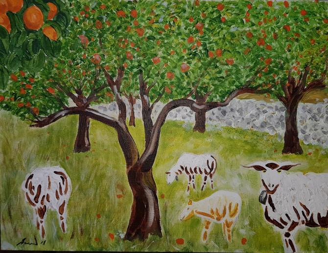 Ovejas debajo de las naranjas de primavera en Soller (Sheep under the spring oranges in Soller)