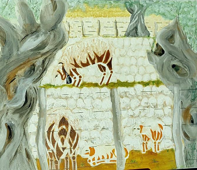 'Ovejas en las terrazas de Olivo en Soller'