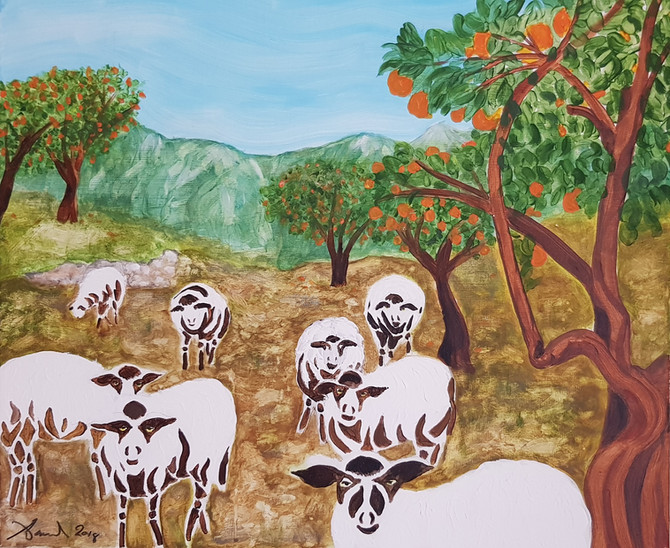 Las ovejas miran fijamente a los visitantes de su montaña (sheep stare at visitors to their mountain