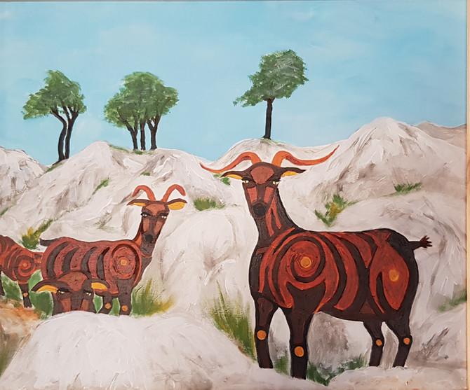 Las cabras montesas de Valldemossa saben de quién es el jefe! (Mountain goats in Valldemossa know wh