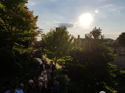 The gathering in the gardens