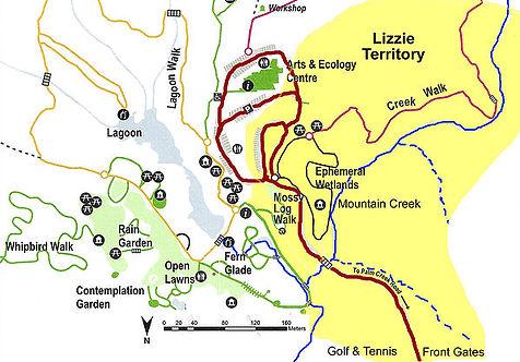Lizzy territory.jpg
