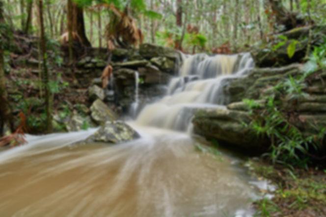 Upland Track Falls