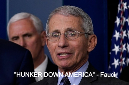 Fauci ask Americans need to 'hunker down' this fall and winter as pandemic to likely worsen