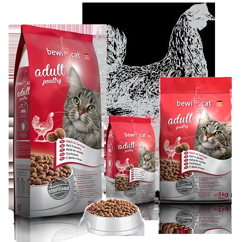 """בוויקט עוף 10 ק""""ג מזון פרימיום לחתולים"""