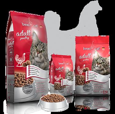 בוויקט עוף 20 קג מזון פרימיום לחתולים