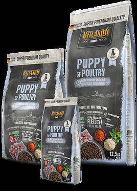 בלקנדו פאפי מזון לכלבים ללא דגנים