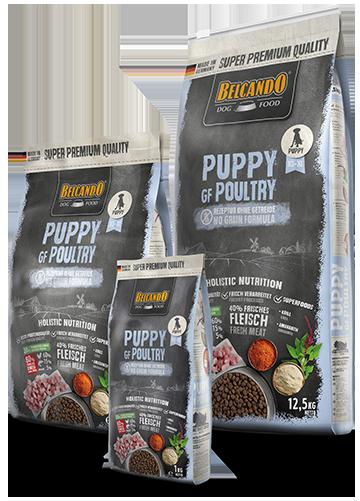 בלקנדו פאפי מזון לכלבים ללא דגנים 4 ק״ג