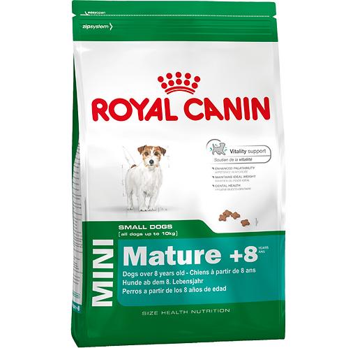 רויאל קנין כלב מיני אדולט 8+ 8 ק״ג