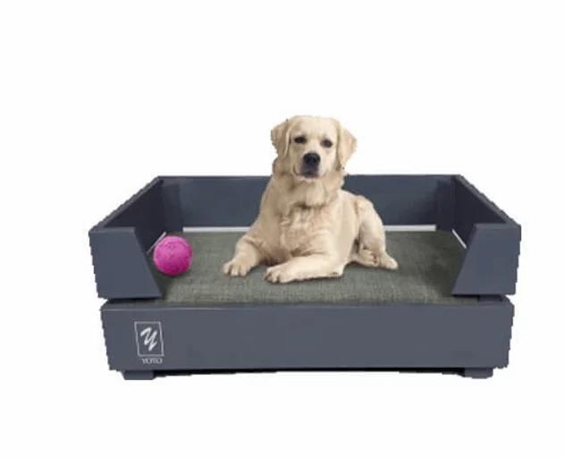 מיטה לכלב דגם גוני