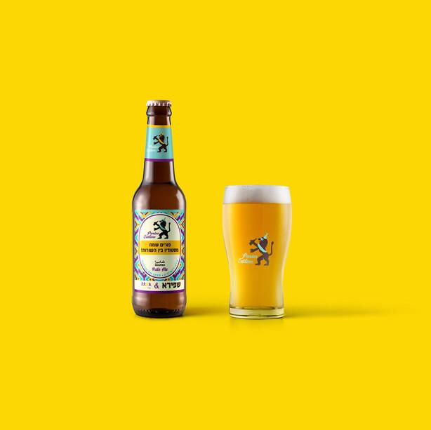 Shapiro Beer 2017