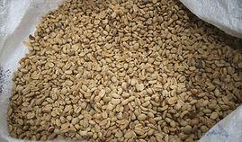 Raw Bean.jpg