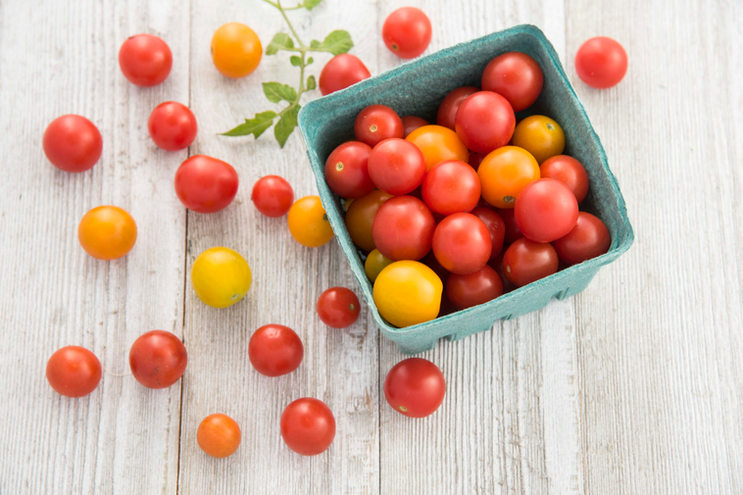 Tomato Cutie