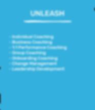 33T WEB - UNLEASH.png