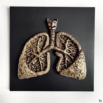 Human Lungs - Black Frame - Gold