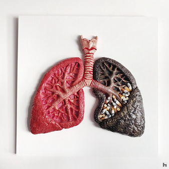 Human Lungs - White Frame - Cigarettes