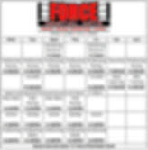 force martial arts timetable.png
