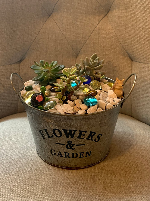 Mini Succulent Garden DIY