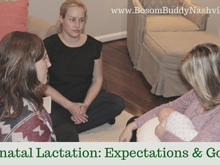 Prenatal Lactation: Expectation and Goals