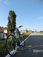 Bicicletta Ciclabile