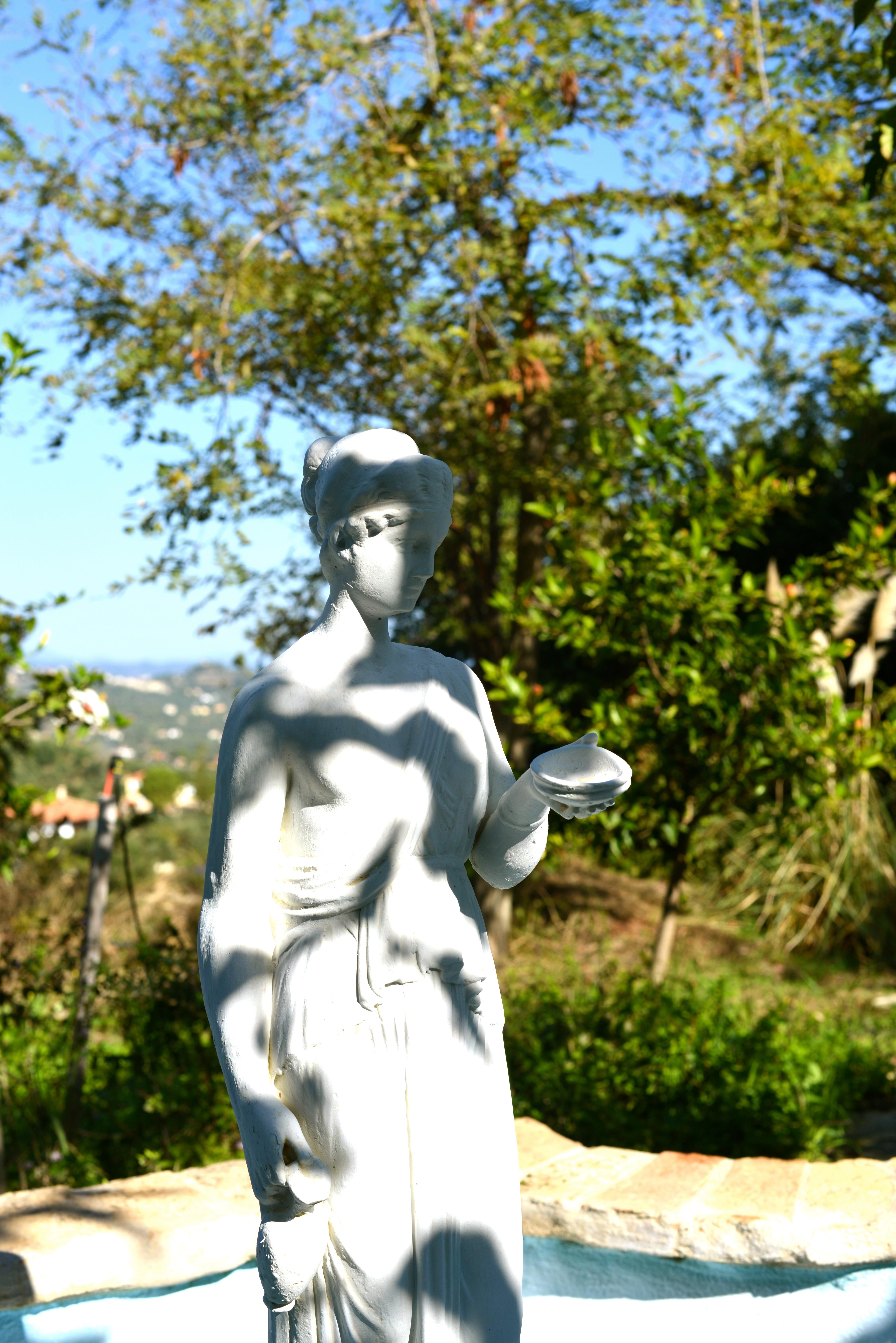 Evy fontein