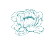 Teal _03_Icon.png