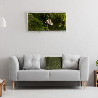 Moss Frame Inspiration 16