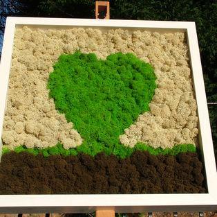Moss Frame Inspiration 11