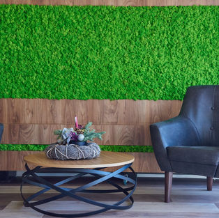Moss Wall Inspiration 8