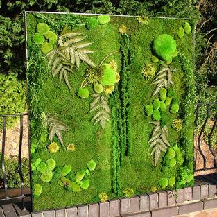 Moss Frame Inspiration 22