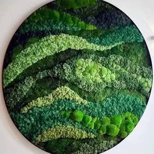Moss Frame Inspiration 4