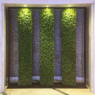 Moss Wall Inspiration 21
