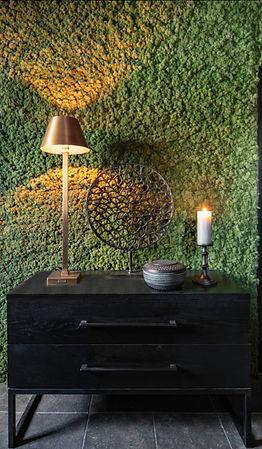 Biophilic Examples Moss Wall.jpg