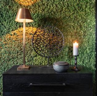 Moss Wall Inspiration 17