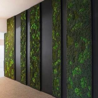 Moss Wall Inspiration 28