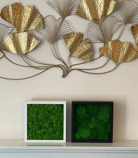 Combo Pole and Reindeer Moss Frames