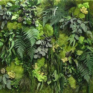 Moss Wall Inspiration 9