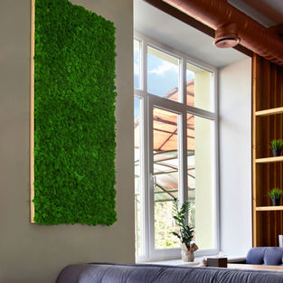Moss Frame Inspiration 15