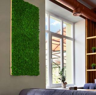 Moss Frame Inspiration 14