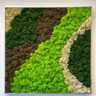 Moss Frame Inspiration 10