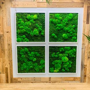 Moss Frame Inspiration 13