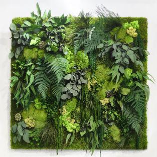 Moss Frame Inspiration 1