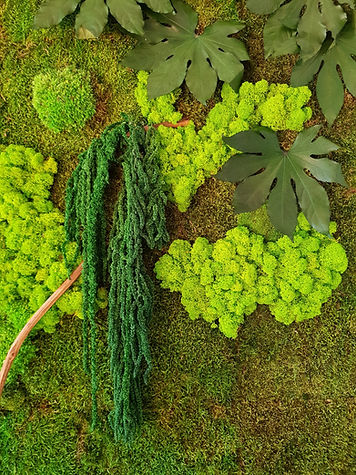MossLife Forest Wall Zoom Image.jpg