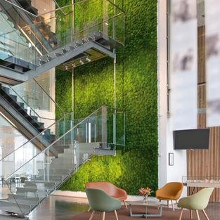 Moss Wall Inspiration 16