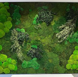 Moss Frame Inspiration 5